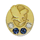 Forever Living pin - Diamond Sapphire Manager