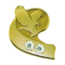 Forever Living pin - Double Diamond Manager