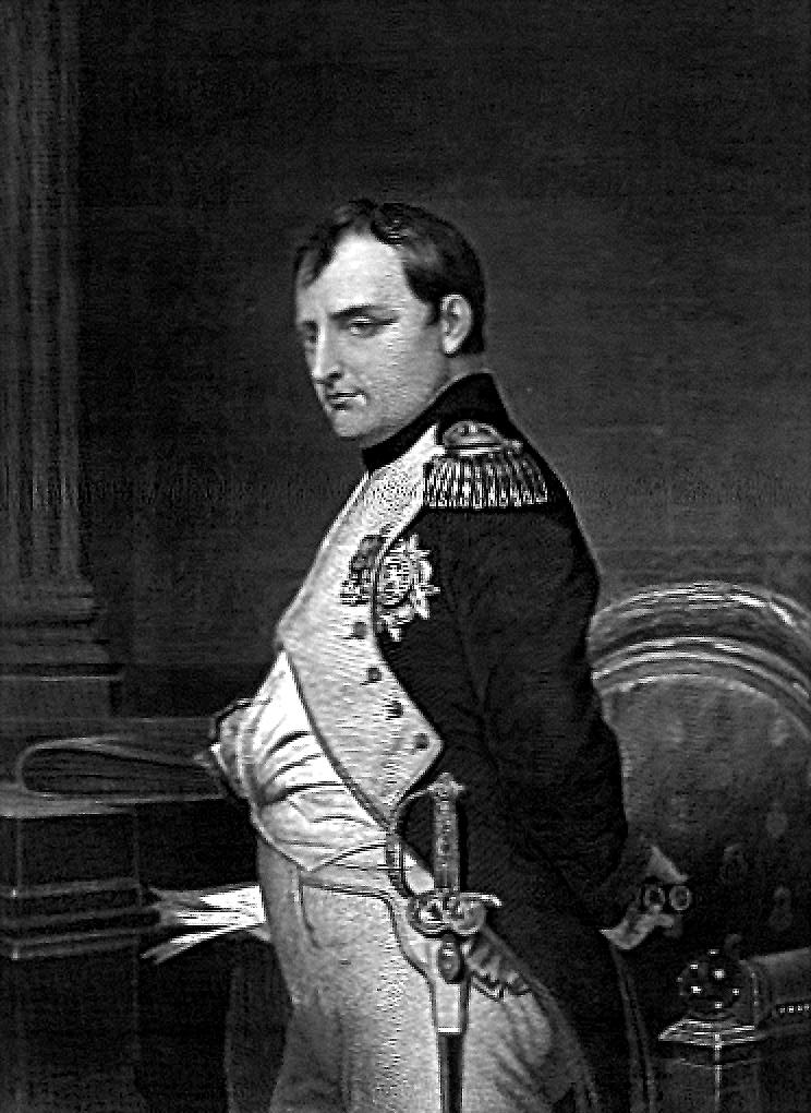 Napoleon Bonaparte's army used aloe vera as a healing agent for the wounded soldiers.